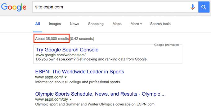 Site Search Google